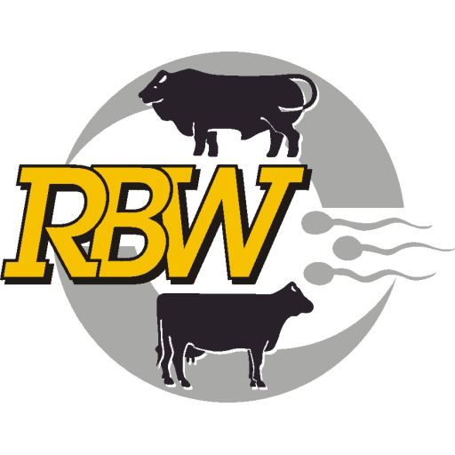 RBW Online-Auktion